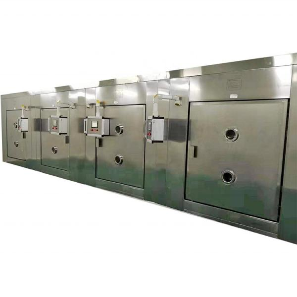 America farm Customized Continuously Tunnel Belt Industria Hemp Drying Machine Herbs Dryer #1 image