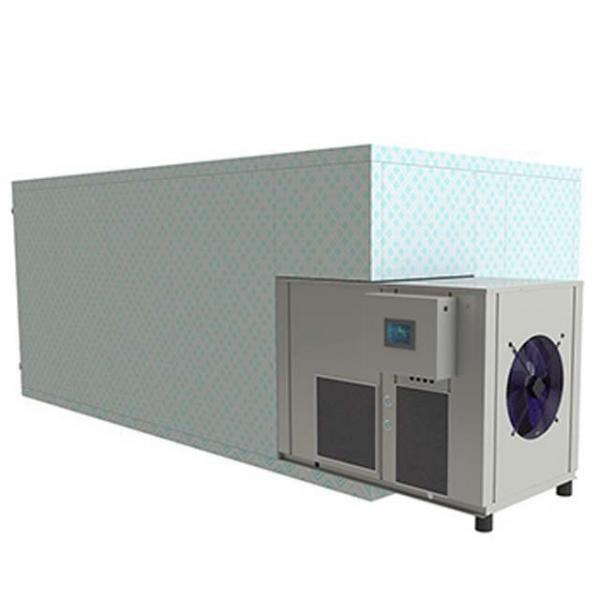 Continuous Conveyor Tunnel Belt Dryer/Drying Machine for Grass #1 image